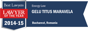 Gelu Titus Maravela has earned a Lawyer of the Year award for 2014!