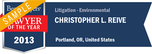 Christopher L. Reive has earned a Lawyer of the Year award for 2013!