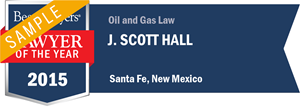 J. Scott Hall has earned a Lawyer of the Year award for 2015!