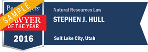 Stephen J. Hull has earned a Lawyer of the Year award for 2016!