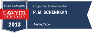 P. M. Schenkkan has earned a Lawyer of the Year award for 2013!