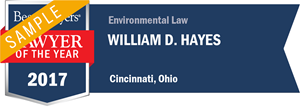 William D. Hayes has earned a Lawyer of the Year award for 2017!