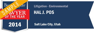 Hal J. Pos has earned a Lawyer of the Year award for 2014!