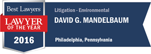 David G. Mandelbaum has earned a Lawyer of the Year award for 2016!