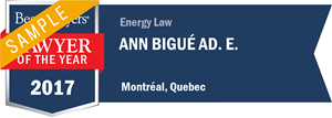 Ann Bigué Ad. E. has earned a Lawyer of the Year award for 2017!