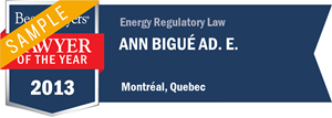 Ann Bigué Ad. E. has earned a Lawyer of the Year award for 2013!