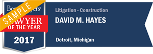 David M. Hayes has earned a Lawyer of the Year award for 2017!