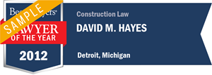 David M. Hayes has earned a Lawyer of the Year award for 2012!