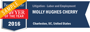 Molly Hughes Cherry has earned a Lawyer of the Year award for 2016!