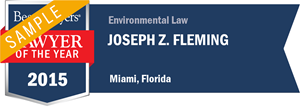 Joseph Z. Fleming has earned a Lawyer of the Year award for 2015!